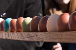 Paolo_Vaccari_tavola con uova